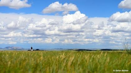 ...in der mongolischen Steppe.