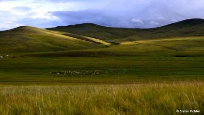 Und mehr Schafe als Einwohner hat die Mongolei auch.