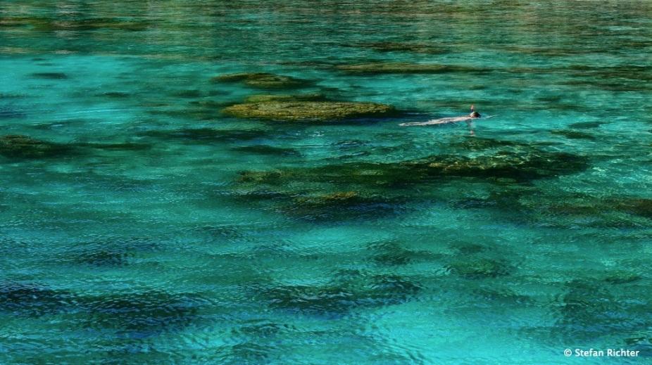 Korallen-Check by Julia.