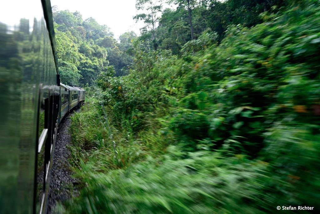 Im Jungle Train von Kota Bharu nach Kuala Lipis.