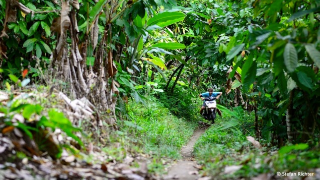 Ausflug in die Bananenplantagen irgendwo im Hinterland.