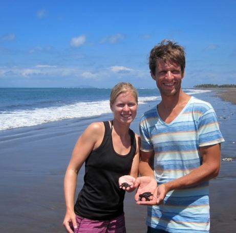 Entlassung in die Freiheit - nach der Aufzucht geht es für die Baby-Schildkröten ins Meer.