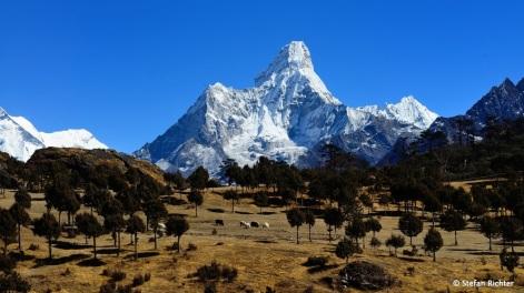 Der Ama Dablan wird auch das Matterhorn des Himalaya genannt.