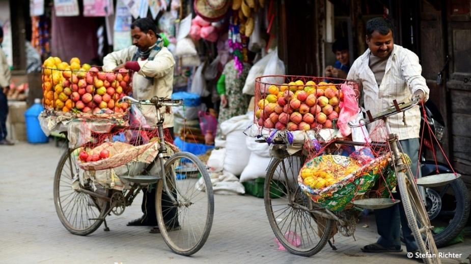 Äpfel und Mandarinen stehen momentan hoch im Kurs.