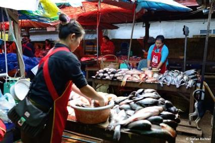 Fische waschen in Salavan.