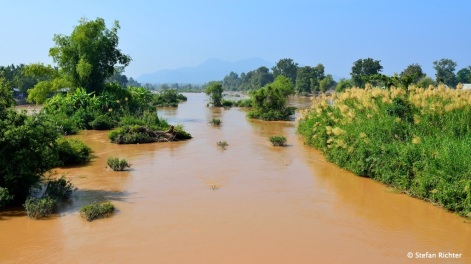 Mekong #1