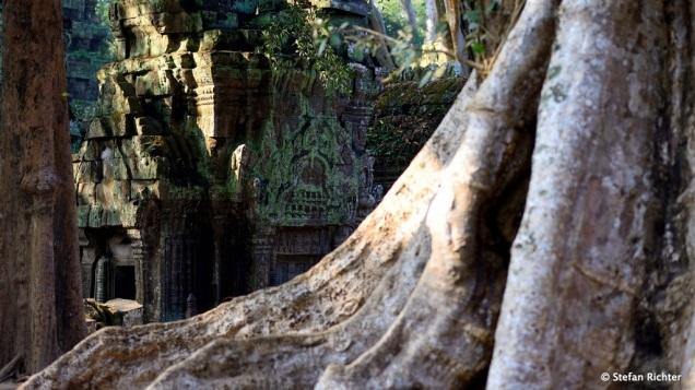 …und verwandelt die Tempel in mystische Gebilde.