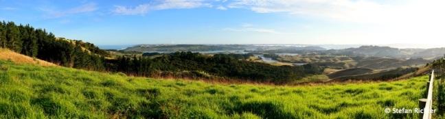 Kiwi Panorama.