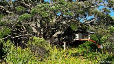Die Kiwi Häuser haben es uns angetan.
