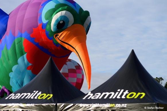 Ein Kiwi-Ballon ist auch dabei.