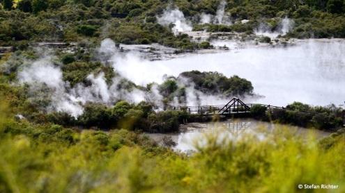 """Dampf steigt auf im Thermalareal """"Te Whaka""""."""