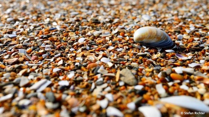 Strandansichten.