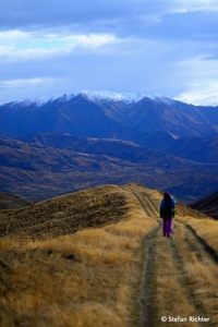Blick Richtung Mt. Aspring National Park.