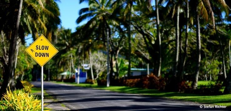 Langsam fahren? Das Speed Limit auf der Insel liegt doch eh nur bei 50 km/h.
