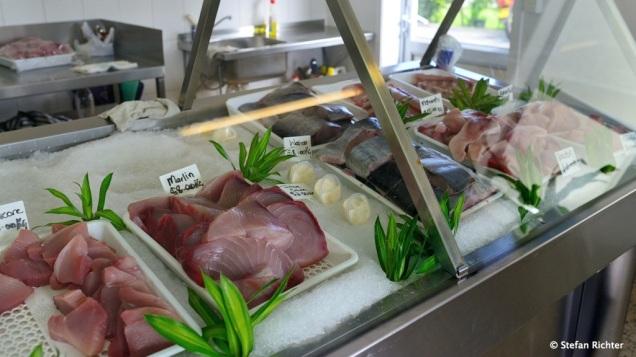 Frischer Fisch fertig filetiert - Thunfisch, Marlin, Mondfisch usw.