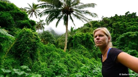 Verloren im Dschungel.