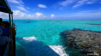 Cruise durch die Korallenbänke.