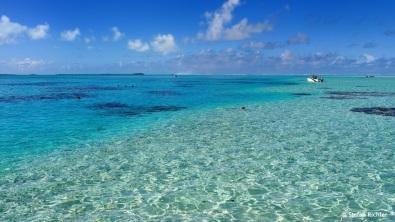 Vor Honeymoon Island gibt es einen der besten Schnorchelspots in der Lagune.