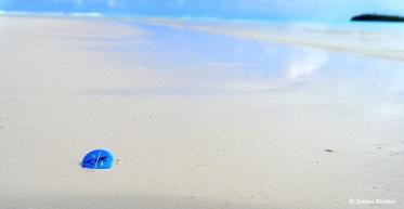 Julia und Stefan auf Weltreise in Aitutaki, Cook Islands.