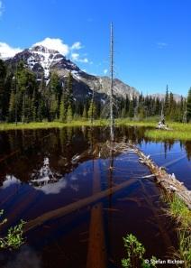Wandertour durch den Glacier National Park.