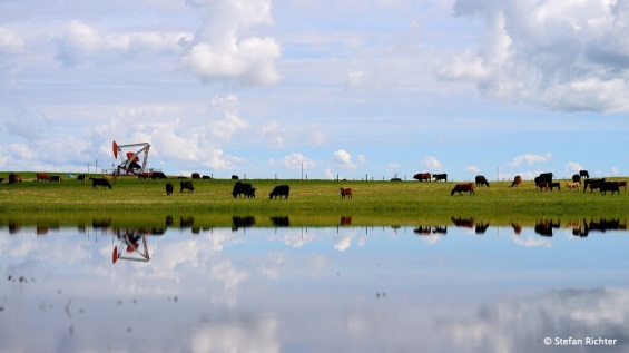 Die Ölpumpe ist in Alberta immer in Betrieb.