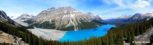 Peyto Lake @ Icefields Parkway.