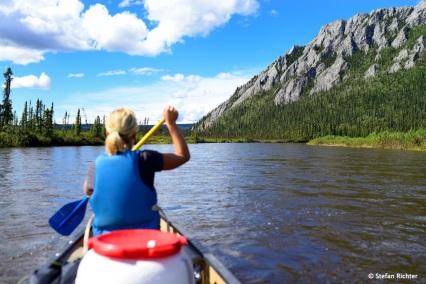 Der Beaver Creek führt direkt durch die White Mountains.
