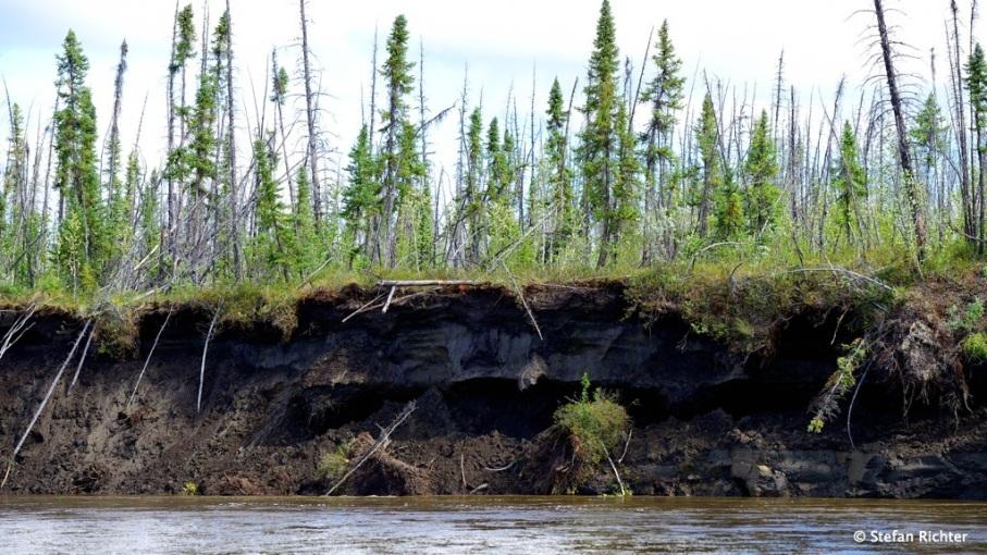 Permafrost am Ufer.