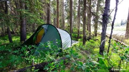 Für die nächste Nacht weichen wir in den Wald aus.