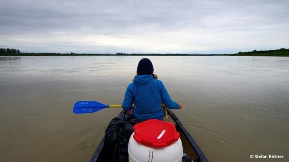 Wir sind wieder auf dem großen Fluss @ Yukon River.