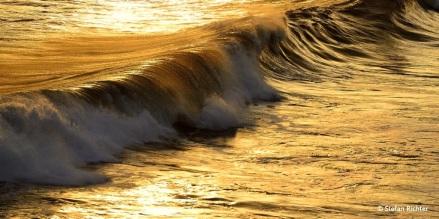 Die Welle.