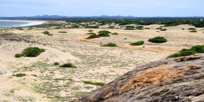 Die Sanddünen von Panama.
