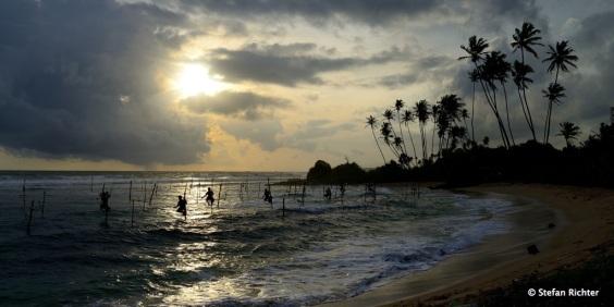 Stilt Fishing @ Sunset.