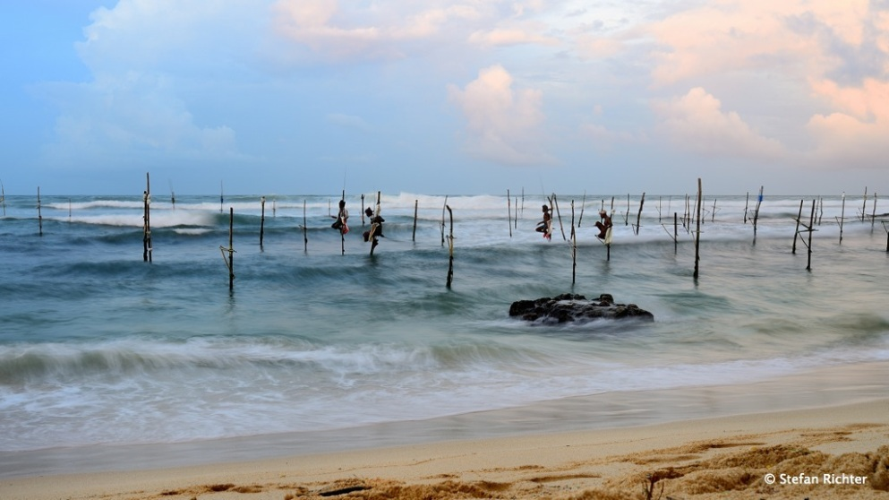 Eine Tradition in Sri Lanka: Stilt Fishing.
