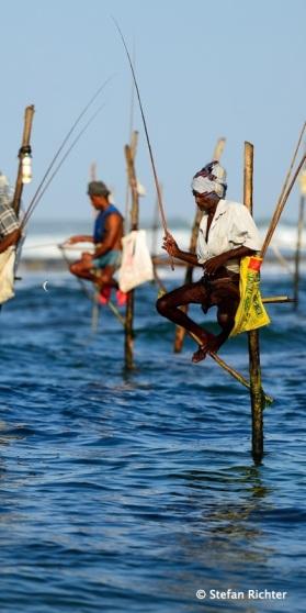 Am Morgen und am Abend sitzen die Fischer auf ihren Stäben und angeln.