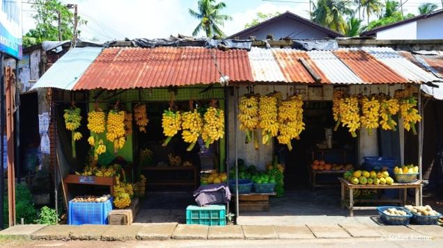Kleine Auswahl an Bananen.