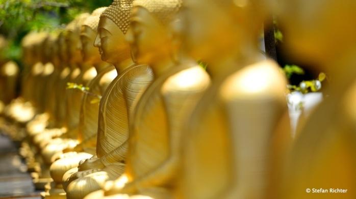 Der Buddhismus spielt in vielen Teilen Sri Lankas eine sehr wichtige Rolle.