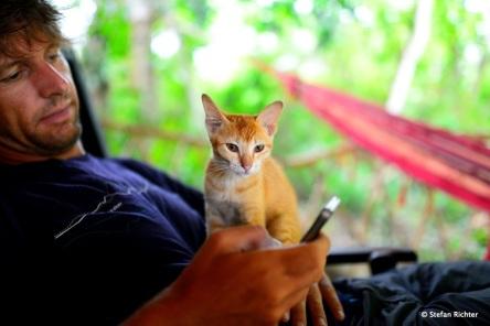 Stefan hat kurzzeitig eine neue Freundin gefunden. Und das, obwohl er Katzen doch eigentlich gar nicht mag.