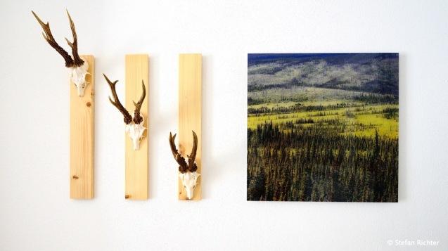Rehbock Alaska Style neu interpretiert.