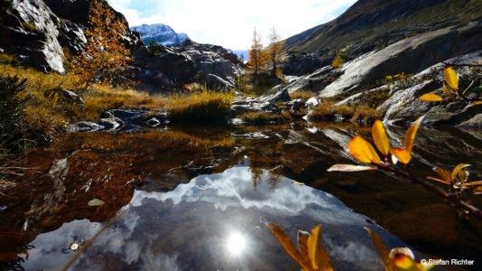 Herbstspiegel.