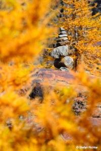 Herbstfeeling in Tirol.