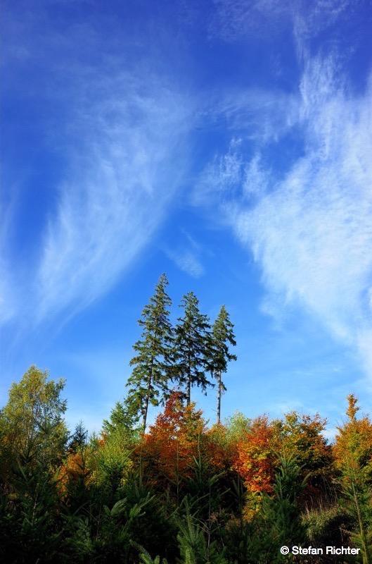 Start in einen bunten und bikereichen Herbst.