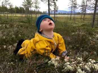 Finn ist fasziniert von den vielen Bäumen.