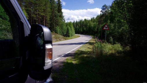 Wir sind in Elch-Country.